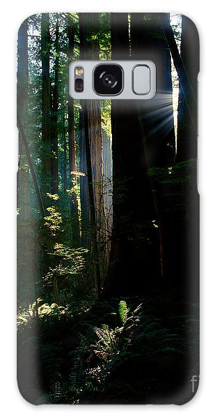 Prairie Creek Redwoods State Park 6 Galaxy Case
