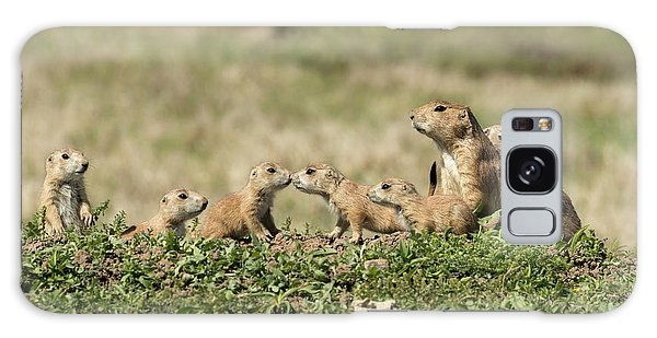 Galaxy Case featuring the photograph Prairie Dog Family 7270 by Donald Brown