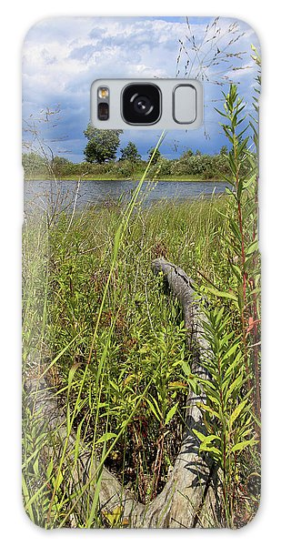 Prairie Meets Wetland Galaxy Case