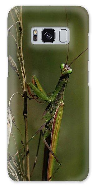 Praying Mantis 2 Galaxy Case