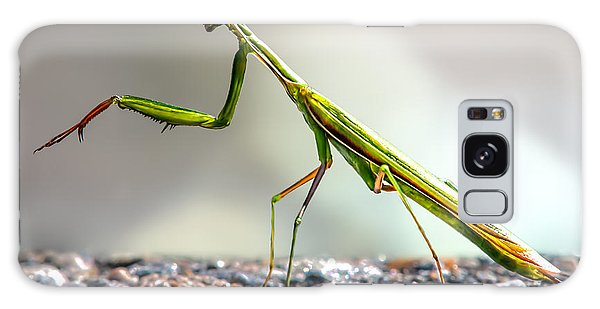 Insect Galaxy Case - Praying Mantis  by Bob Orsillo