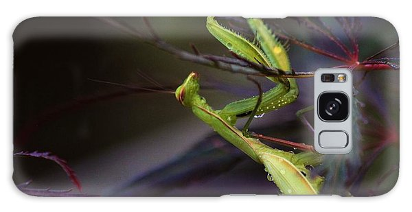 Praying Mantis Galaxy Case by Erica Hanel