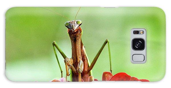 Praying Mantis On Zinnia Galaxy Case