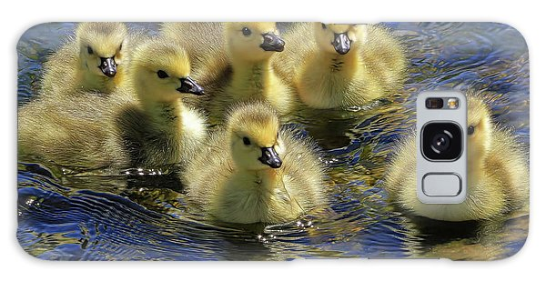 Canada Goose Galaxy Case - Precious Goslings by Donna Kennedy
