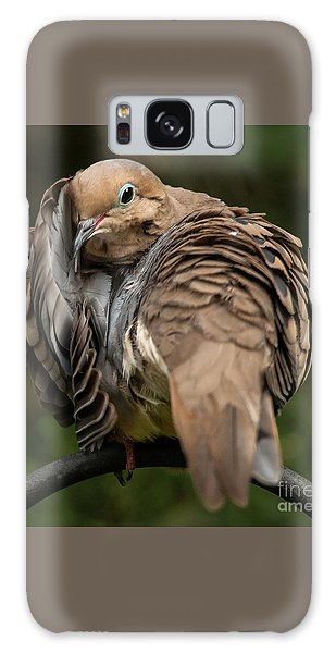 Preening Dove Galaxy Case by Jim Moore