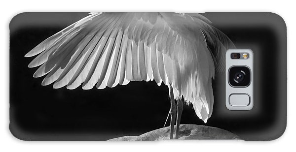 Preening Great Egret By H H Photography Of Florida Galaxy Case by HH Photography of Florida
