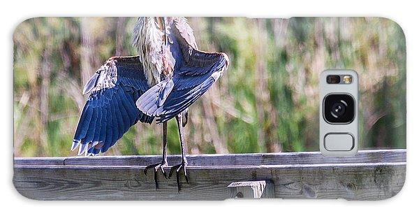 Preening Gret Blue Heron Galaxy Case by Edward Peterson