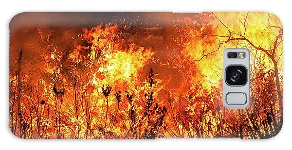 Prescribed Burn Galaxy Case