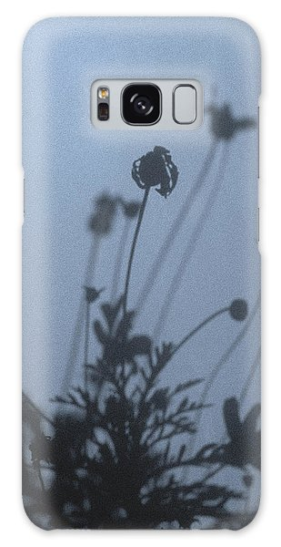 Pressed Daisy Bush Blue Galaxy Case