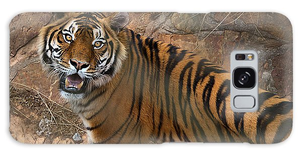 Pretoria Zoo Galaxy Case by Steven Richman