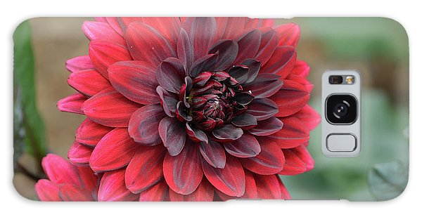 Pretty Blooming Red Dahlia Flower Blossom Galaxy Case