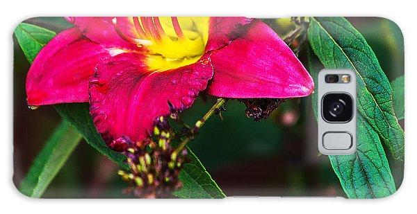 Pretty Flower Galaxy Case by Edward Peterson