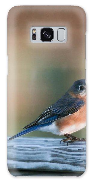 Eastern Bluebird Galaxy Case - Pretty In Blue by Phill Doherty