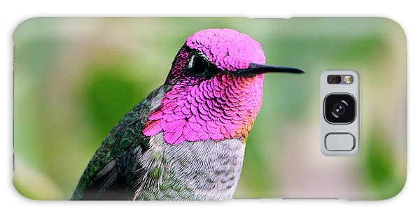 Pretty In Pink Anna's Hummingbird Galaxy Case