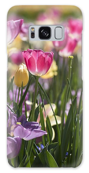 Galaxy Case featuring the photograph Pretty In Pink Tulips by Jeanne May