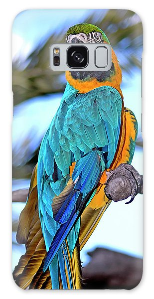 Galaxy Case featuring the photograph Pretty Parrot by Carolyn Marshall