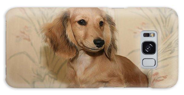 Pretty Pup Galaxy Case