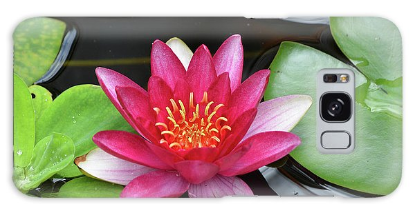 Pretty Red Water Lily Flowering In A Water Garden Galaxy Case