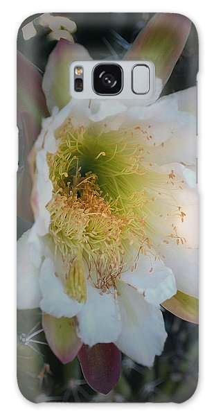 Galaxy Case featuring the photograph Prickley Pear Cactus by Kate Word