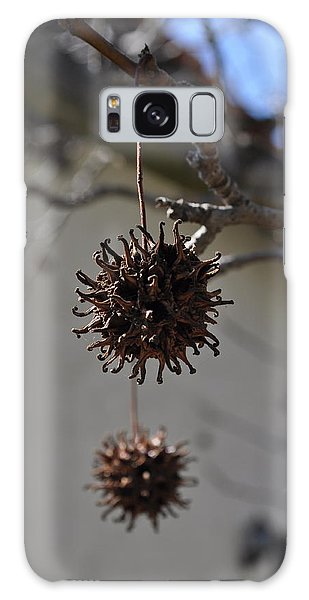 Prickly Liquidamber Pod Galaxy Case