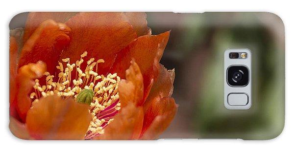 Prickly Pear Bloom Galaxy Case by Laura Pratt