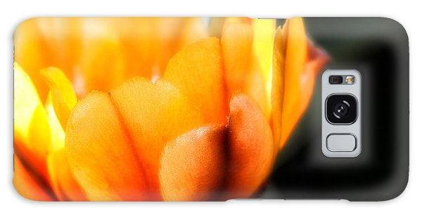 Prickly Pear Flower Galaxy Case by Lynn Geoffroy