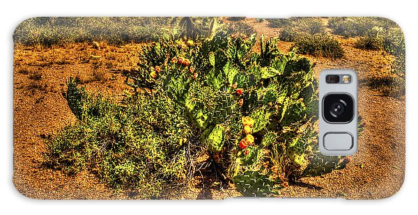 Prickly Pear In Bloom With Brittlebush And Cholla For Company Galaxy Case