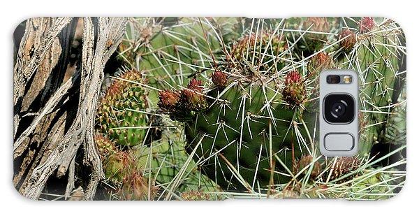 Prickly Pear Revival Galaxy Case