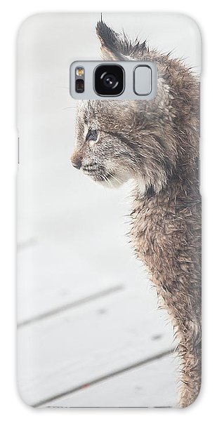 Profile In Kitten Galaxy Case