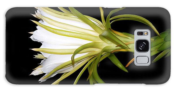 Profile Night Blooming Cereus Galaxy Case