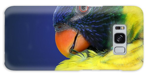 Profile Of A Lorikeet Galaxy Case
