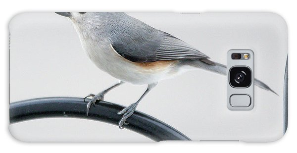 Profile Of A Tufted Titmouse Galaxy Case