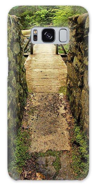 Prospective Memorial Bridge Galaxy Case