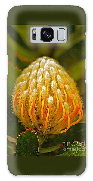Proteas Ready To Blossom  Galaxy Case by Michael Cinnamond