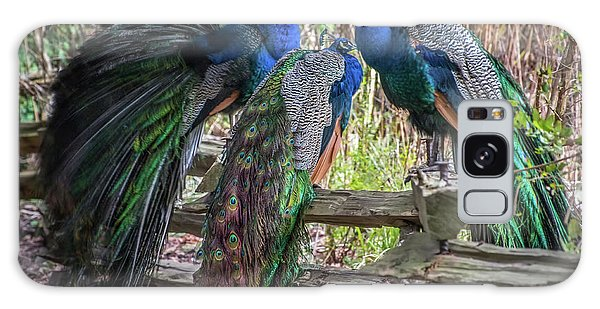 Proud As Three Peacocks Galaxy Case by Keith Boone
