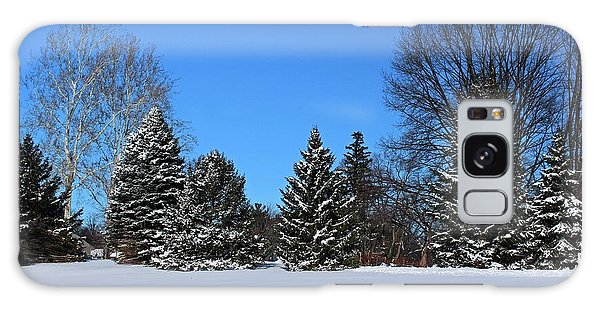 Provincial Pines Galaxy Case