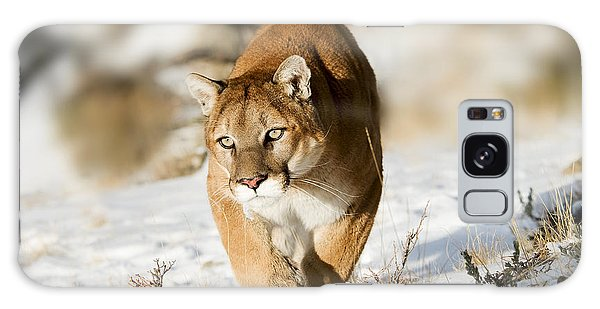 Prowling Mountain Lion Galaxy Case