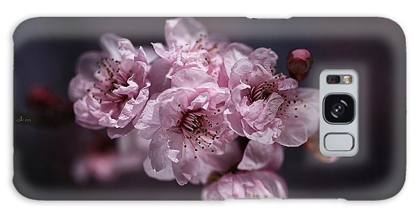 Prunus A Pink Spring Galaxy Case by Joy Watson