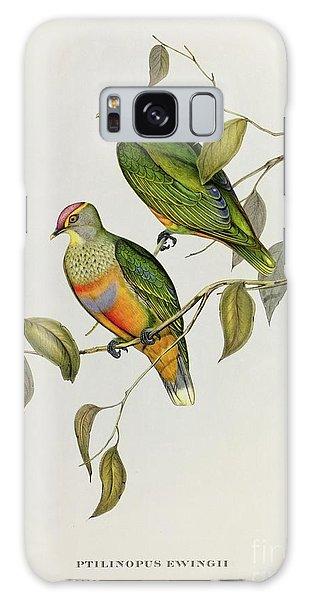 Lovebird Galaxy S8 Case - Ptilinopus Ewingii by John Gould