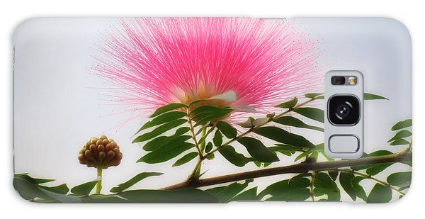 Puff Of Pink - Mimosa Flower Galaxy Case