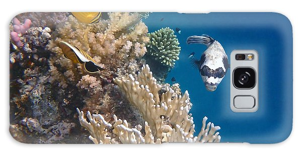 Pufferfish And Butterflyfish Galaxy Case