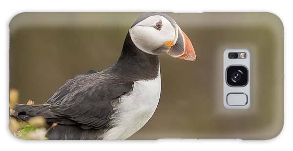 Puffin Galaxy S8 Case - Puffin by Ian Hufton
