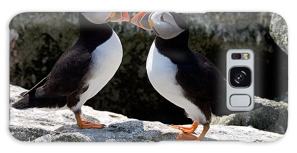 Puffin Love Galaxy Case by Brent L Ander