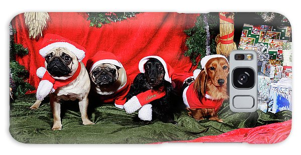 Pugs And Dachshounds Dressed As Father Christmas Galaxy Case