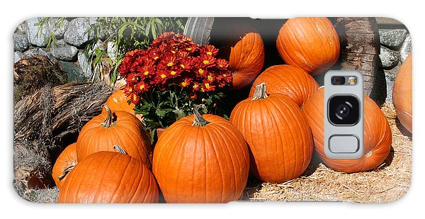 Pumpkin Galaxy S8 Case - Pumpkins- Photograph By Linda Woods by Linda Woods