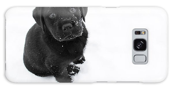 Puppy In The Snow Galaxy Case