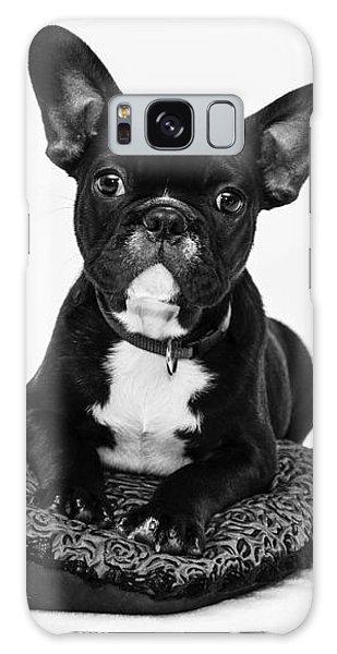 Puppy - Monochrome 5 Galaxy Case