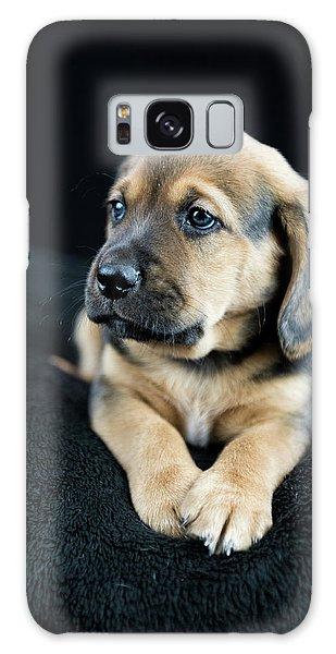 Puppy Portrait Galaxy Case