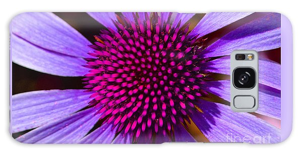Purple And Pink Daisy Galaxy Case