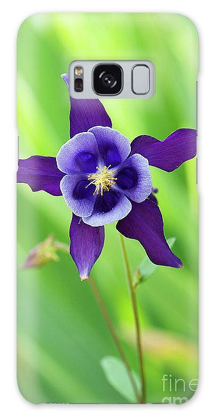 Aquilegia Galaxy Case - Purple Aquilegia Flower by Tim Gainey